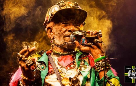 Reggae Fever x 66